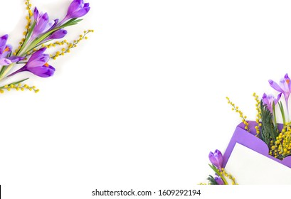 Frame of spring snowdrops flowers violet crocuses and yellow flowers mimosa in violet postal envelope with space for text on a white background. Top view, flat lay