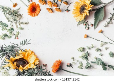 Frame of summer garden flowers with pretty sunflowers on white background, top view