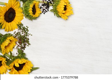 Frame of sunflowers on white background