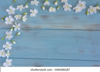 Frame for text with a texture of blue wooden boards with beautiful white spring flowers on the edge. Background with flowers for greeting card and lettering. Spring and summer background with flowers
