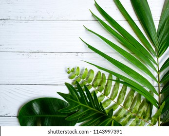 frame of tropical leaves. Summer concept.leaf on wood table