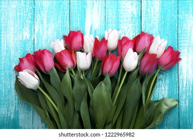 Frame of tulips on turquoise rustic wooden background. Spring flowers bouquet. Spring background. Valentine's Day and Mother's Day background. Top view.