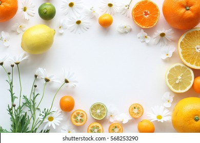 Frame of various citrus fruits and marguerite flower on white background,top view