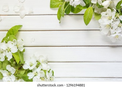 Frame with white apple flowers and green leaves on light wooden background with copy-space; top view, flat lay, overhead view