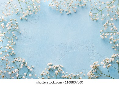 Frame of white flowers, gypsophila. Flat lay composition. Blue background. Top view. Copy space.
