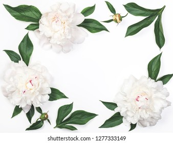 Frame of white peony flowers and leaves isolated on white background. Top view. Flat lay.