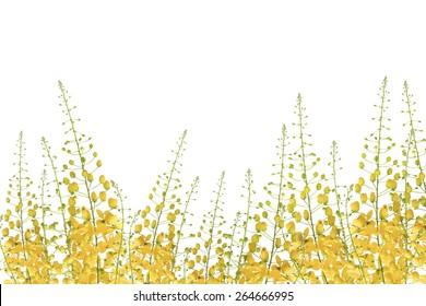 Frame of yellow flower