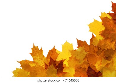 Framework from autumn leaves on a white background