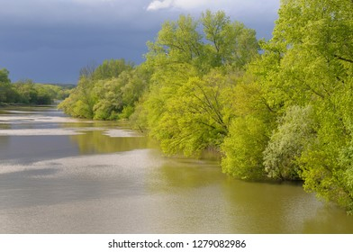 France, Centre, Chatillon-sur-Loire. Spring trees along the banks of the Loire River
