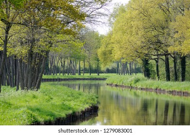 France, Loire. Waterway winding through spring trees and foliage, Canal lateral a la Loire