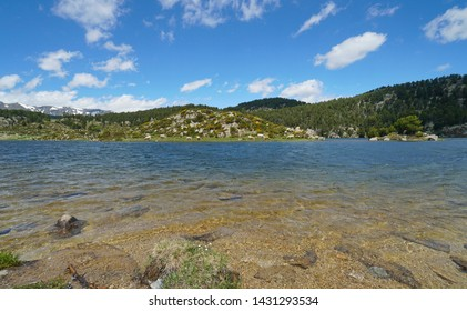 France mountain lake shore with islet and cattle cows, Pyrenees-Orientales, Estany de la Pradella, natural park of the Catalan Pyrenees