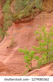 France, Provence-Alpes-Cote d'Azur, Vaucluse, Roussillon. Trees and red ochre at Sentier des Ocres