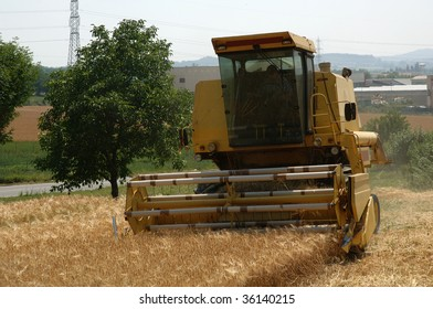 Franciacorta (Bs),Lombardy,Italy, a  threshing a field of barley