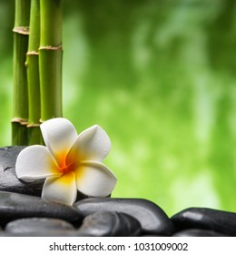 frangipani and bamboo on the zen basalt stones
