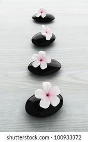 frangipani flower on black stone, zen spa on white wood
