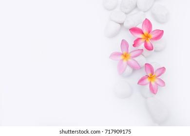 frangipani flower on pile of white stones background- Zen spa background