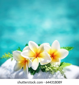 Frangipani flowers border over blue water background, spa still life, travel and tourism, conceptual photo of a summer vacation with copy space