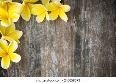 Frangipani flowers on wood background