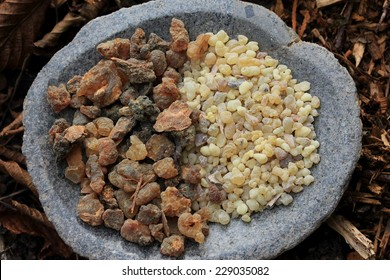 Frank Incense tears (olibanum gummi from Ethiopia) and Myrrh Gum Resin Incense (myrrhae gummi from Kenia) in tears in a stone bowl with a forest soil (bark mulch, leafs) background