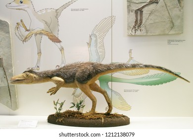 FRANKFURT AM MAIN,GERMANY,MAY The 5th 2014:The Senckenberg Museum exhibits the recent biodiversity of life and evolution of organisms of planet Earth