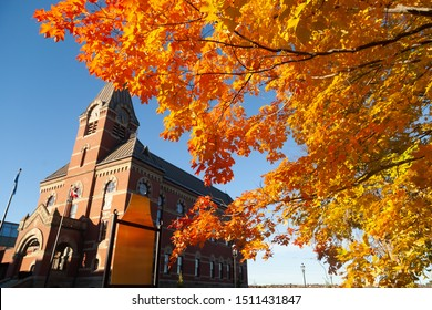 Fredericton city hall in New Brunswick Canada with maple leaves, autumn color