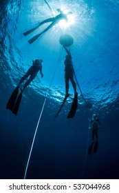 Free divers training in the tropical sea, Bali, Indonesia