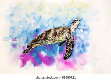 Turtle Painting High Res Stock Images Shutterstock