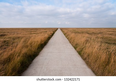 Free path in the salt marshes on the North Sea
