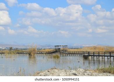 Free public wetlands wildlife park in Crevillent Spain Europe