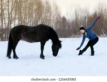 The free relations of a person and a horse is in outdoors. The horsewomen is training her black mare in a winter field, natural horsemanship.