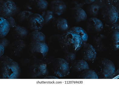 free space of blueberries