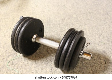 Free weights in the gym