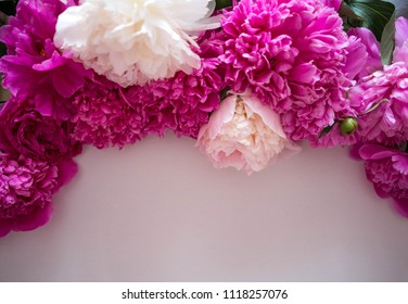 free white space for text and pink and white peonies around