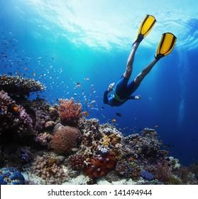 Freediver gliding underwater over vivid coral reef