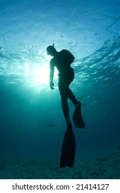 A freediver, silhouetted by the sun shining through from the surface, takes one last look as he begins his ascent to the surface