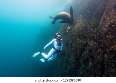 Freediving in the Galapagos