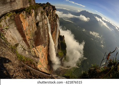 Freedom after Salto Angel falls. Canaima National Park, Venezuela