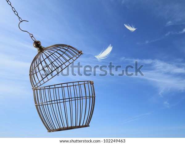 Freedom cage escaping concept