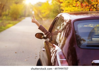 Freedom car travel concept - woman relaxing out of window in a car. Girl relaxing enjoying holidays road trip