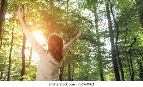Freedom ideas concept, woman with raised hands up in forest at sunset