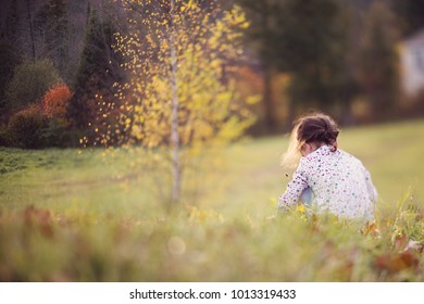 freelensed photo of child sitting in a field with trees in autumn