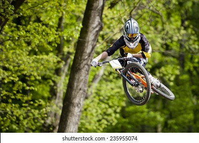 Freeride cyclist on the track