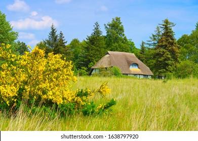 Freesenort on island Ummanz in Germany in spring