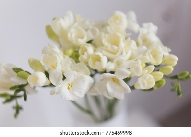 Freesia flowers bouquet white