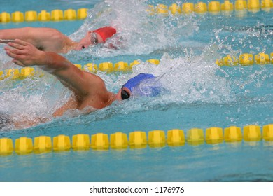 Freestyle swimmers in a race