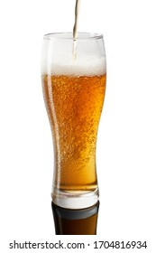 Freeze motion of pouring cold beer in glass on white background