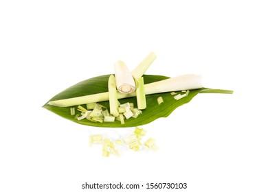 Freigestelltes frisches Zitronengras (Cymbopogon citratus). Fresh lemon grass with white background.