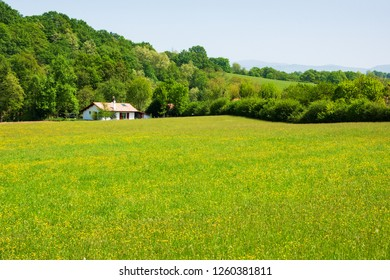 French Basque Country landscape with typical farmhouse and forested mountain at background. Rural countryside tranquil vacation concept. France.