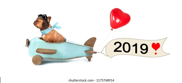 French Bulldog enjoys a flight in a wooden aircraft, with a banner for happy new year 2018