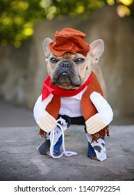 french bulldog terrier dressed in a cowboy outfit with a lariat or lasso